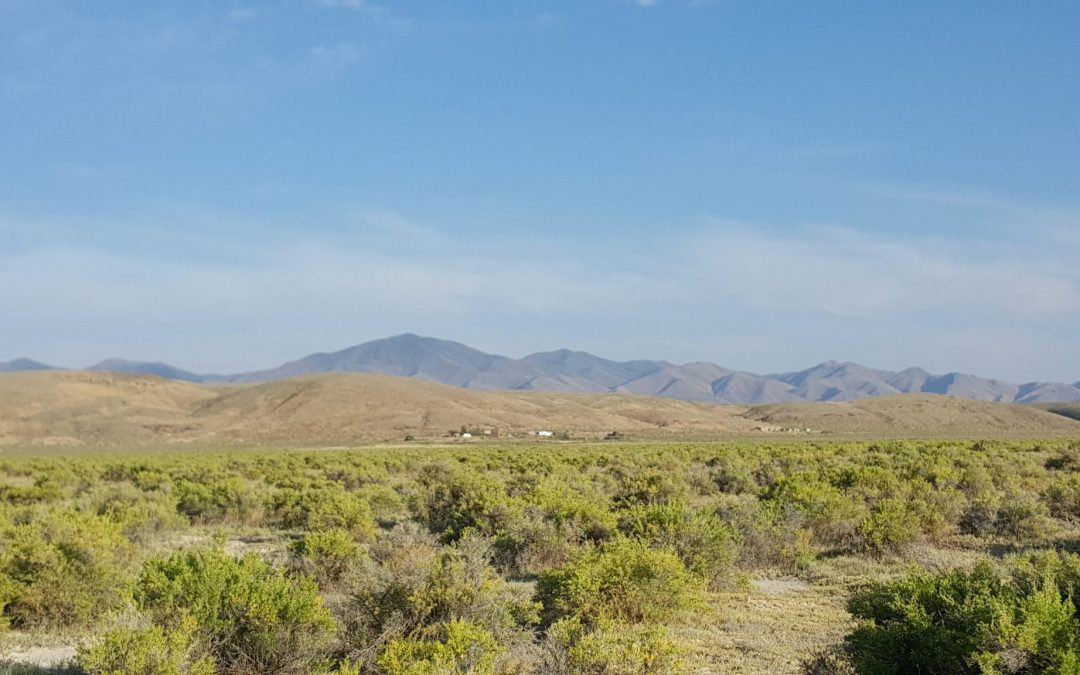 39 Acres in Crescent Valley, Nevada