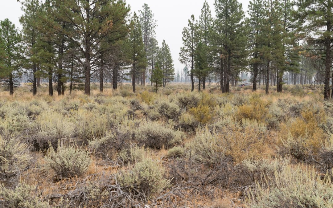 2.26 Acres near Sprague River in Klamath county, OR