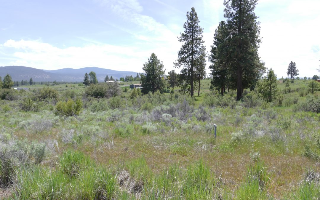 .88 Acres near Agency Lake, OR