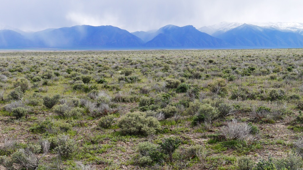 4.77 Acre Parcel in Crescent Valley, NV